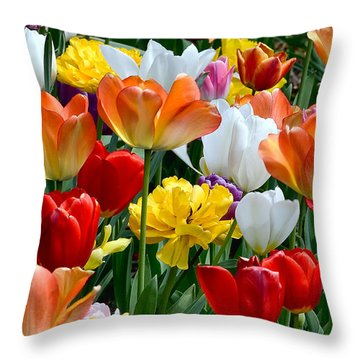 Splash Of Spring Throw Pillow