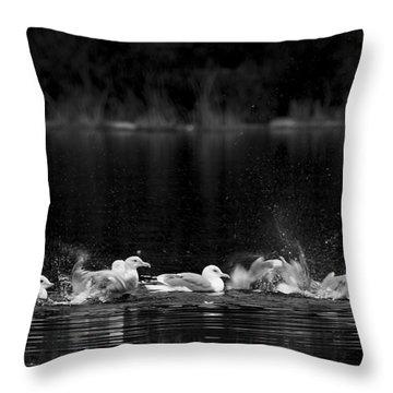 Throw Pillow featuring the photograph Splashing Seagulls by Yulia Kazansky
