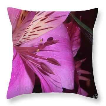 Splendid Beauty Throw Pillow