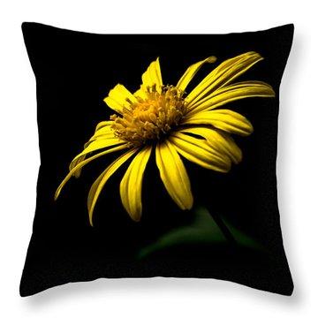 Splendid In Yellow Throw Pillow
