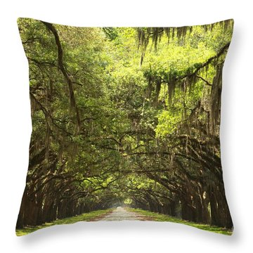 Splendid Oak Drive Throw Pillow