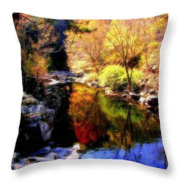 Splendor Of Autumn Throw Pillow by Karen Wiles