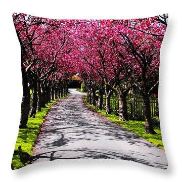 Splendour 2 Throw Pillow