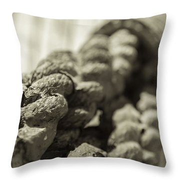 Spliced And Bound Black And White Sepia Throw Pillow