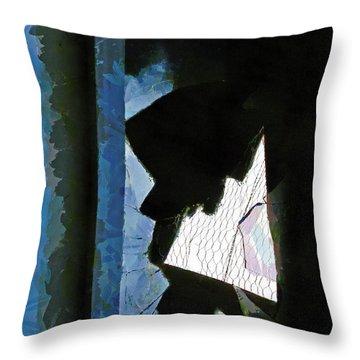 Splintered  Throw Pillow by Steve Taylor