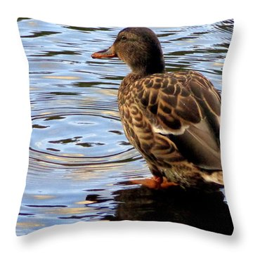 Throw Pillow featuring the photograph Splish Splash by Joseph Skompski
