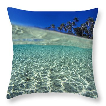 Split Level Palms Throw Pillow by Sean Davey