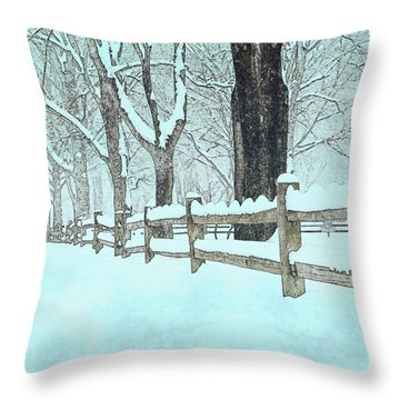 Split Rail Blues Throw Pillow by John Stephens