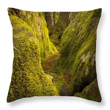 Split Rock Throw Pillow by Joe Doherty