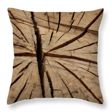 Split Wood Throw Pillow by Art Block Collections