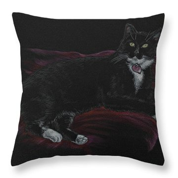 Spooky The Cat Throw Pillow by Michele Myers