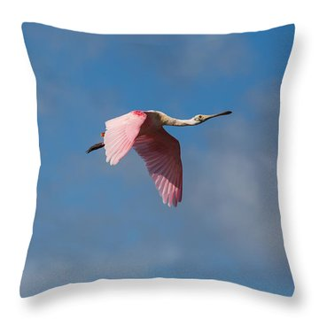 Throw Pillow featuring the photograph Spoonie In Flight by John M Bailey