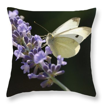Spot Throw Pillow by Arthur Fix