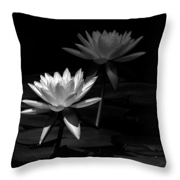Spot Light  Throw Pillow by Ramabhadran Thirupattur