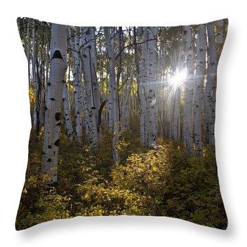 Spot Of Sun Throw Pillow by Jeffrey Kolker
