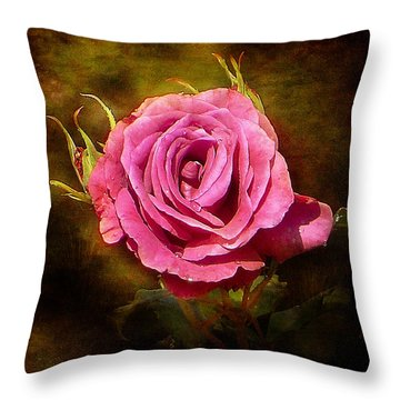 Throw Pillow featuring the photograph Spotlight Attraction by Blair Wainman