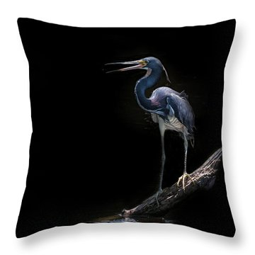 Spotlight Throw Pillow