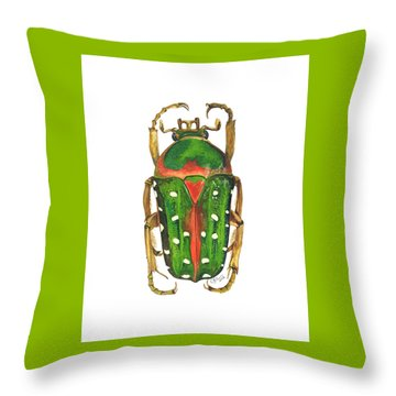 Spotted Flour Beetle Throw Pillow by Cindy Hitchcock