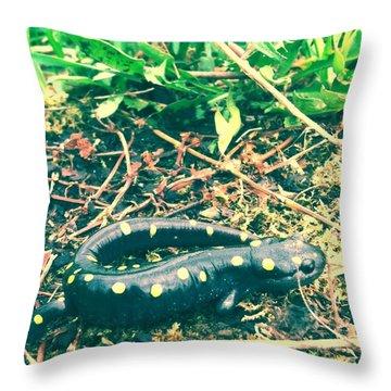 Spotted Salamander Retro Throw Pillow