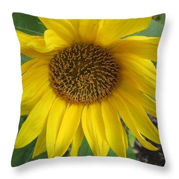 Sprawling Throw Pillow