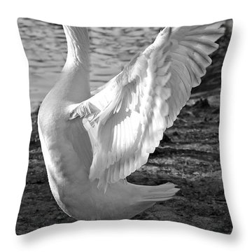 Spread Your Wings B And W Throw Pillow