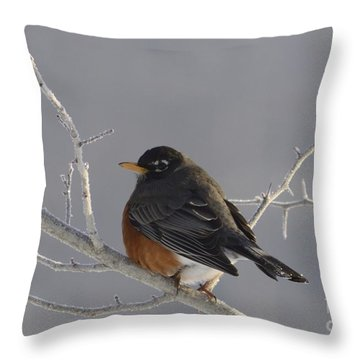 Spring ? Throw Pillow