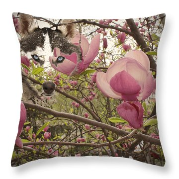 Spring And Beauty Throw Pillow