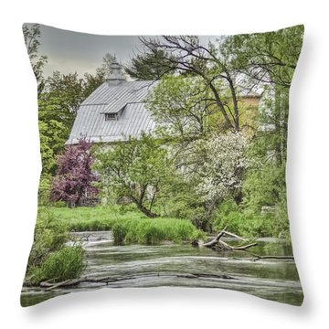 Spring Arrives At The Rose Farm Throw Pillow by Thomas Young