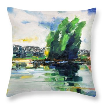 Spring At River Elbe Near Doemitz Germany Throw Pillow by Barbara Pommerenke