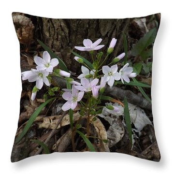 Spring Beauty Throw Pillow by Sara  Raber