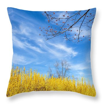 Spring Throw Pillow by Bill Wakeley