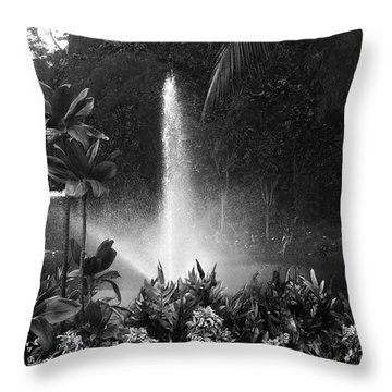 Throw Pillow featuring the photograph Spring- Black And White by Alohi Fujimoto