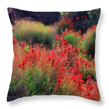 Throw Pillow featuring the photograph Spring Blooms by Barbara Manis