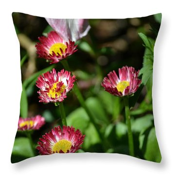 Throw Pillow featuring the photograph Spring Blooms by Tara Potts