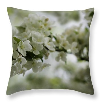 Throw Pillow featuring the photograph Spring Bloosom by Sebastian Musial