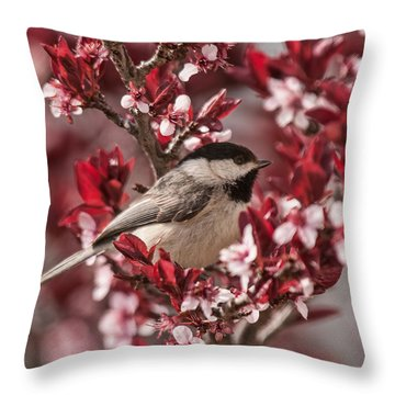 Spring Blossom Chickadee Throw Pillow by Lara Ellis