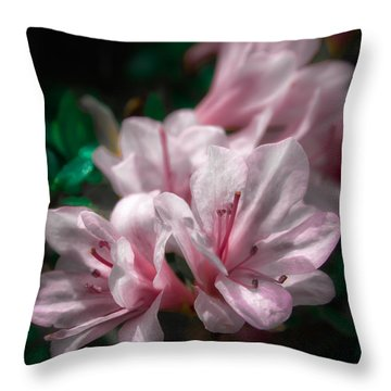 Spring Blossoms #2 Throw Pillow