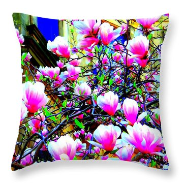 Spring Blossoms Throw Pillow by Ed Weidman