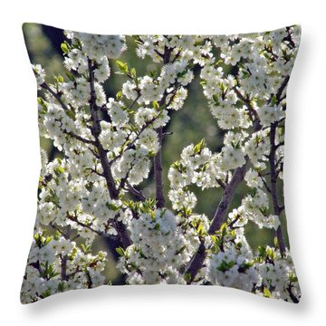 Throw Pillow featuring the photograph Spring Blossoms by Henry Kowalski