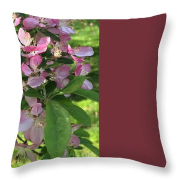 Spring Blossoms - Flower Photography Throw Pillow by Miriam Danar