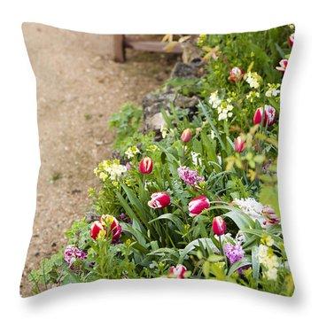 Spring Border Throw Pillow by Anne Gilbert