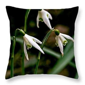 Spring By Leif Sohlman Throw Pillow by Leif Sohlman