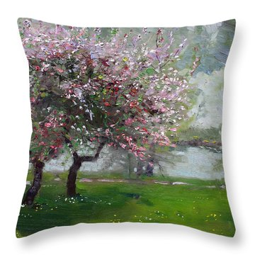 Spring By The River Throw Pillow by Ylli Haruni