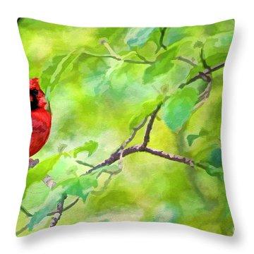 Spring Cardinal Throw Pillow by Darren Fisher