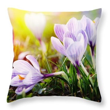 Throw Pillow featuring the photograph Spring by Christine Sponchia