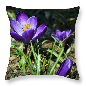 Throw Pillow featuring the photograph Spring Comes by Mary Zeman