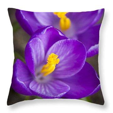 Spring Crocus Throw Pillow by Adam Romanowicz