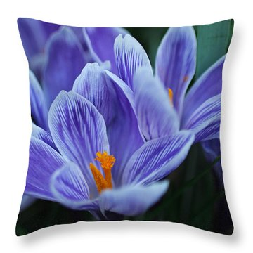 Spring Crocus Throw Pillow by Julie Andel