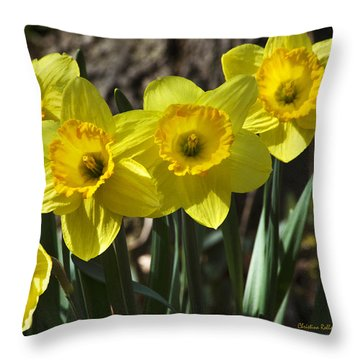 Spring Daffodils Throw Pillow by Christina Rollo