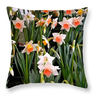 Throw Pillow featuring the photograph Spring Daffodils by Ira Shander